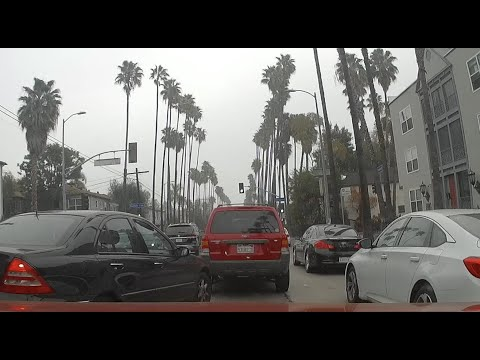 The bad drivers of los angeles 45
