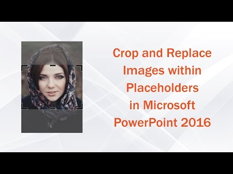 Cropping and replacing images within placeholders in microsoft powerpoint 2016